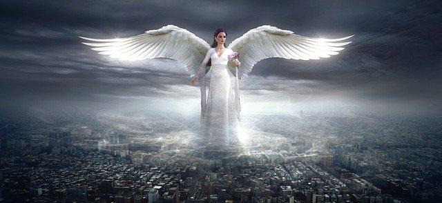Angel 833